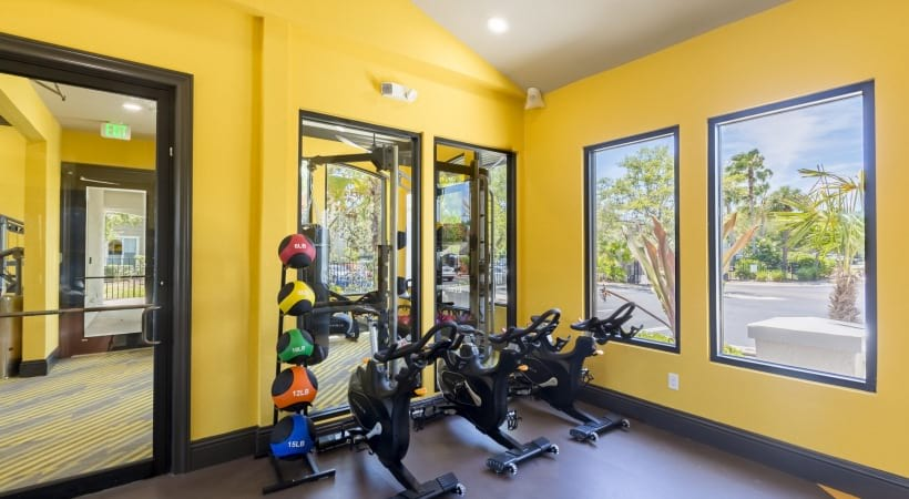 St. Petersburg Apartment with Fitness Center