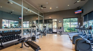 Apartment Gym with Cardio Machines and Free Weights