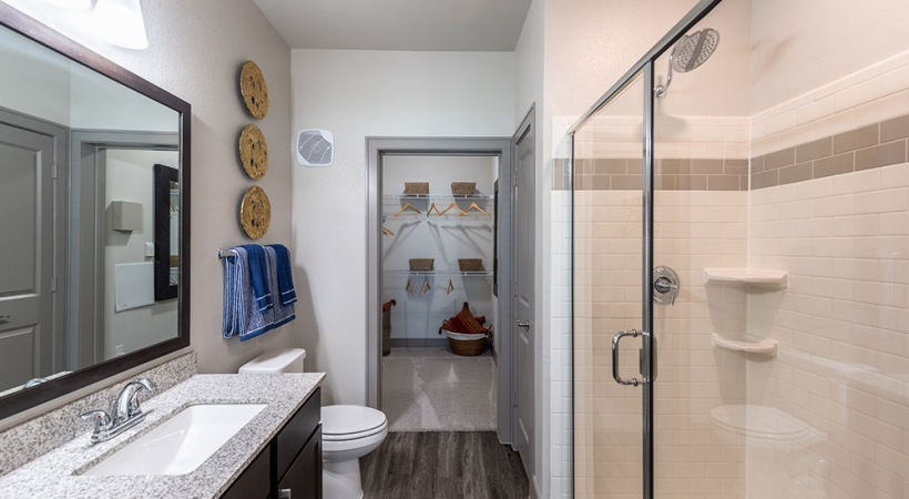 Walk-In Showers with Rainfall Showerheads