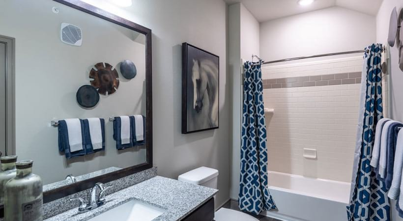 Luxury apartment bathroom with deep soaking bathtubs
