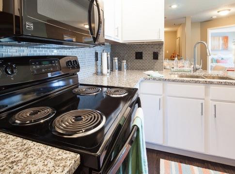 Energy-Efficient, Black Appliances