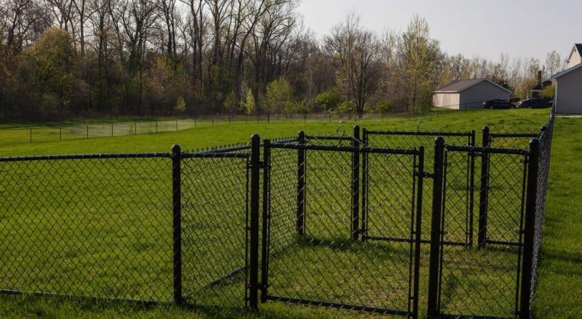 Leash-Free Bark Park