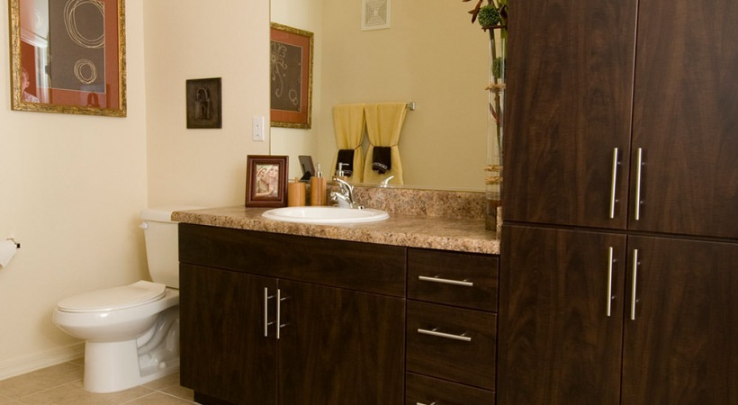 Classic Bathroom with Modern Cabinetry