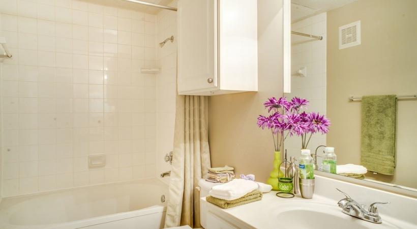 Well lit bathroom with deep-soaking, Garden-Style bathtubs