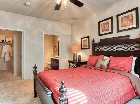 Spacious 1 bedroom apartments for rent in Plano, TX