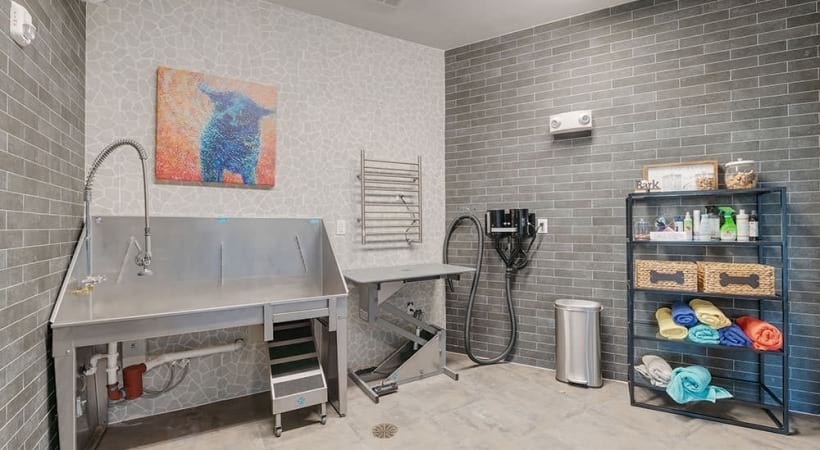 Dog Grooming Spa at our pet friendly apartments in Allen, TX