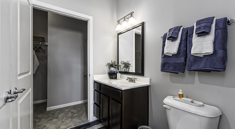lighted sink counter with large mirror in bathroom across from hall closet