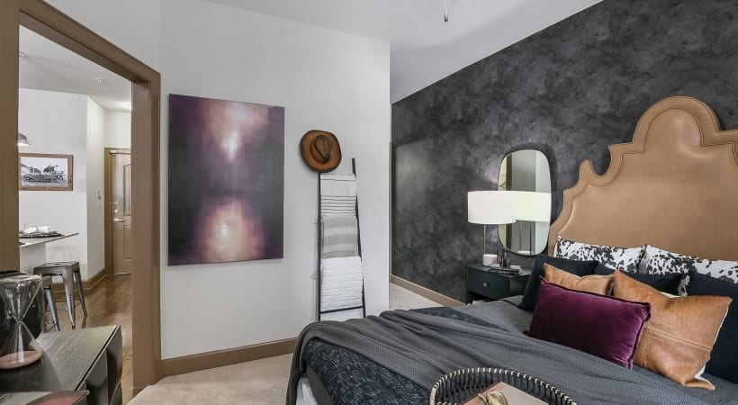 Spacious 1 bedroom apartments in Frisco, TX