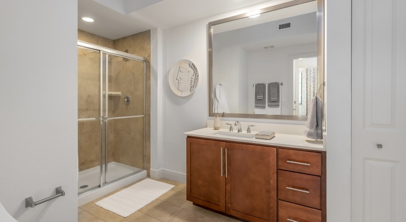 Glass Shower Doors and Framed Mirrors