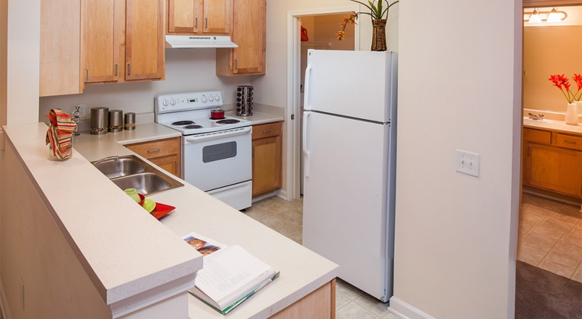 Energy-Efficient, White Appliances