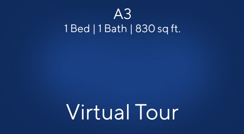 A virtual apartment tour of our