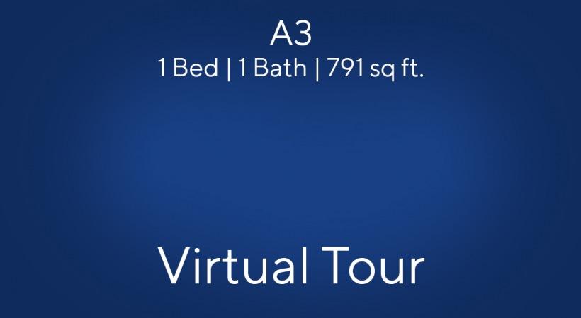 A3 Virtual Tour   1 Bed/1 Bath