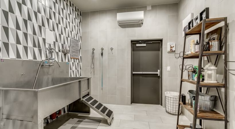 Dog grooming spa with a washing and pampering station at our pet-friendly apartments in Frisco, TX