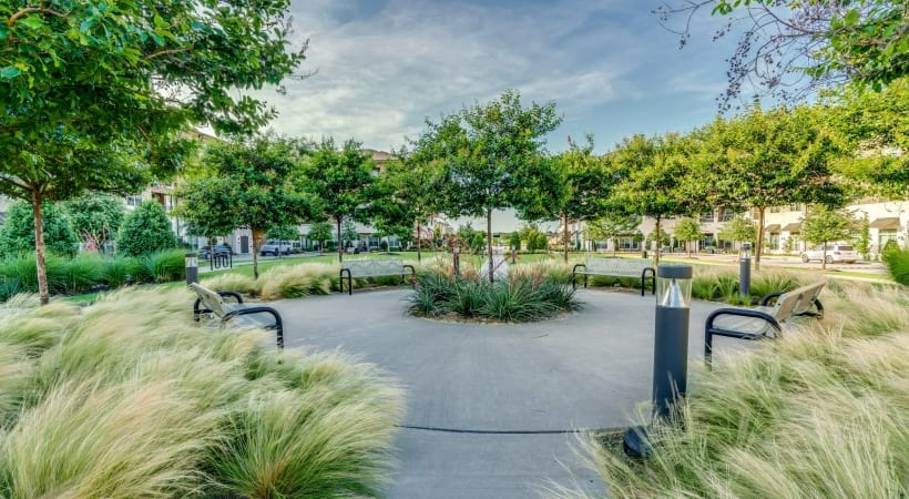 Courtyard with beautiful landscaping and greenery at Verus apartments of Circa Verus Frisco near Legacy West