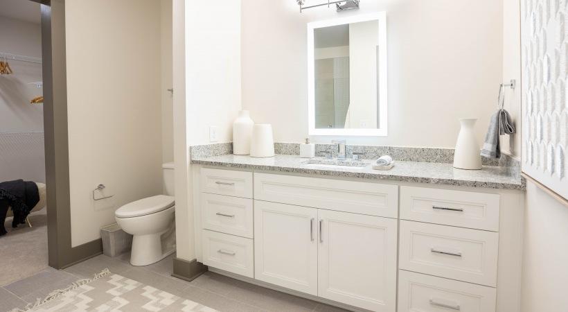 55 plus apartment bathroom with LED mirror