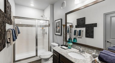 Apartments with Walk-in Shower at Cortland Avion Shadow Creek