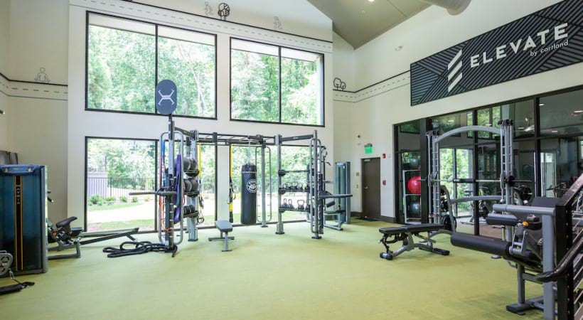 Free weights at the Cantera by Cortland apartment gym