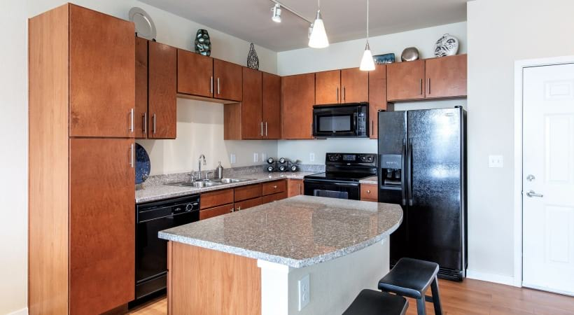 Kitchens with Energy-Efficient, Black Appliances