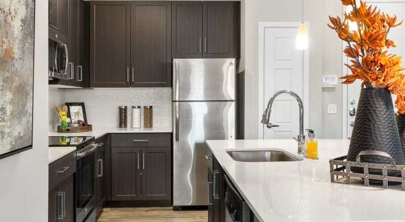 Sleek Quartz Countertops
