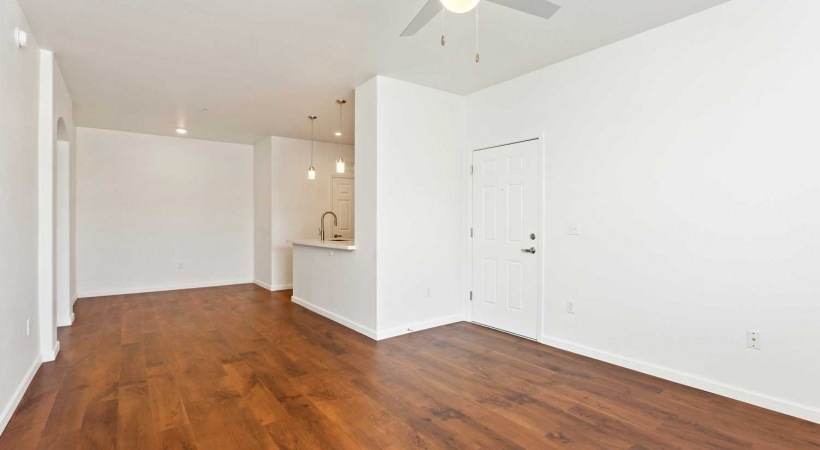 Wood-Style Flooring Throughout