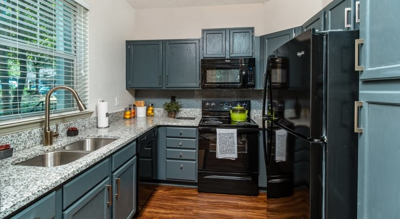 Energy Efficient, Black Appliances