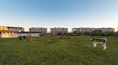 Pet Friendly Apartments in San Antonio with Bark Park