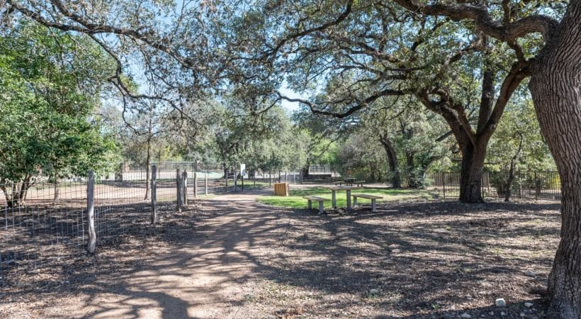 Leash-free bark park at our pet-friendly apartments in Northwest San Antonio
