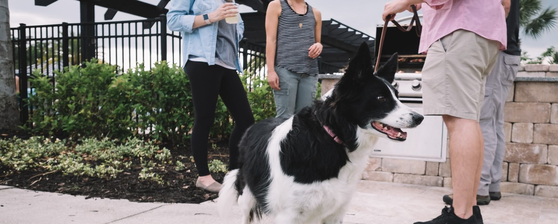 Resident walking with their dog at our pet-friendly apartments in Austin, TX
