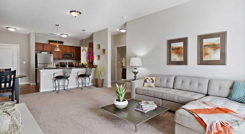 Carpet in Living Room Powell Grand