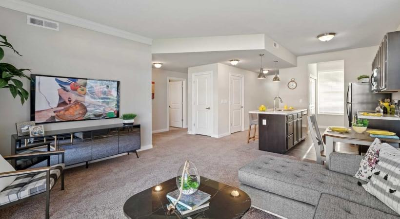 Large Living Rooms at Northlake Summit Apartments