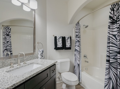 Apartments for Rent in Houston Texas