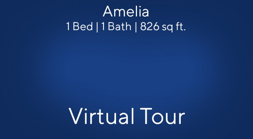 Amelia Virtual Tour | 1 Bed/1 Bath
