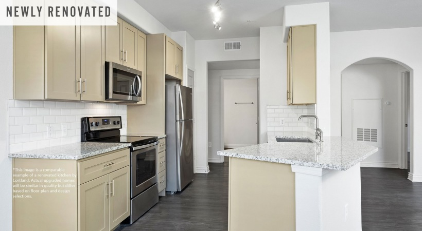 Newly Renovated Kitchen with Stainless Steel Appliances*