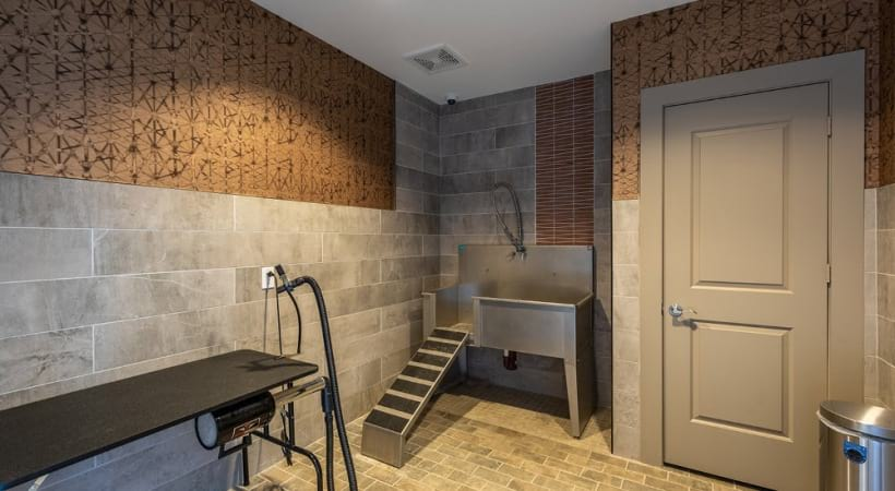 Dog grooming station at luxury apartments in Frisco, TX