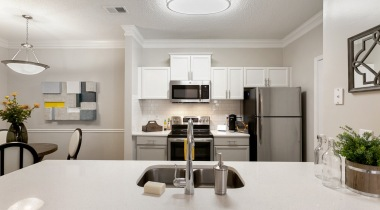 brightly lit kitchen view of kitchen sink and upgraded appliances