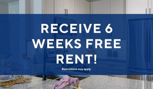 Special on newly renovated apartment homes.  Immediate move-ins welcome!
